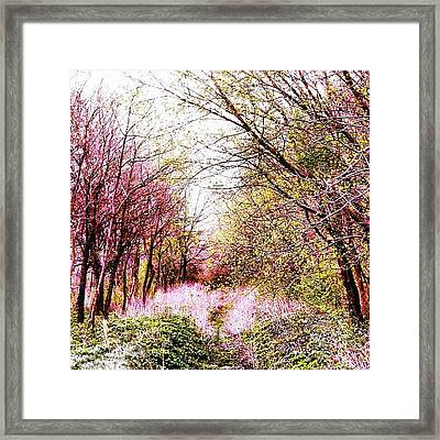 #mgmarts #hungary #visionary #forest Framed Print by Marianna Mills