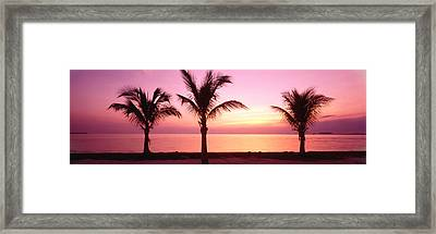 Miami Beach, Florida, Usa Framed Print by Panoramic Images