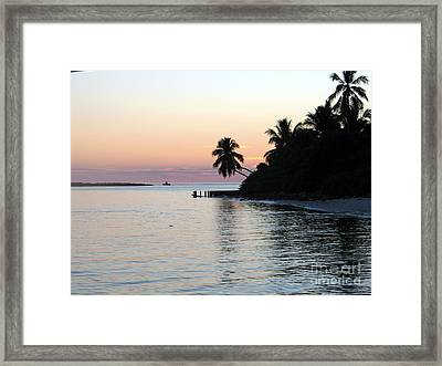 Framed Print featuring the photograph Miami Palms by Shelia Kempf