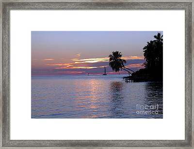 Framed Print featuring the photograph Miami Sunset by Shelia Kempf