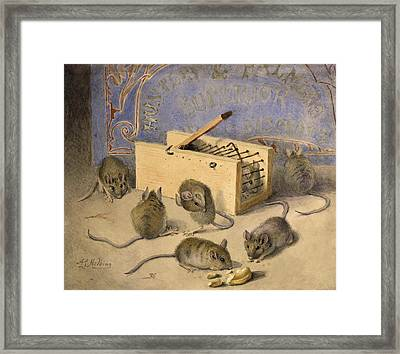 Mice And Huntley Palmers Superior Biscuits Framed Print by Agnes Louise Holding