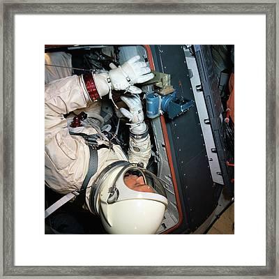 Michael Collins Framed Print