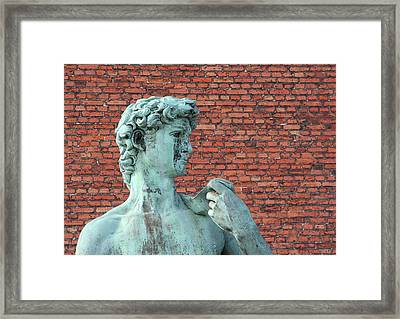 Michelangelos David Framed Print