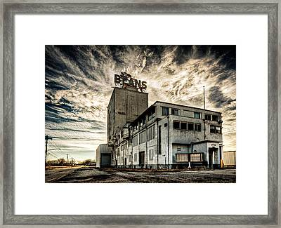 Michigan Bean Framed Print