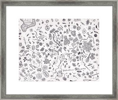 Microbes Framed Print