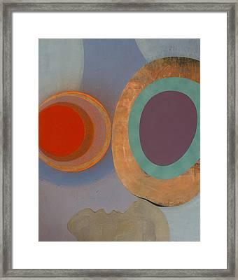 Microcosm Framed Print by Fernando Alvarez