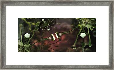 Microscopic Image Of Brain Neurons Framed Print by Panoramic Images