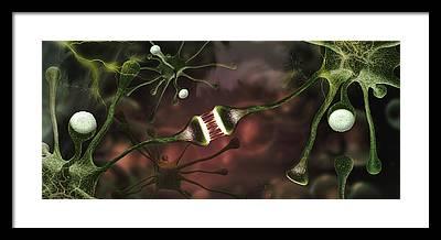 Microbiology Framed Prints