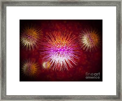 Microscopic View Of Dendrimers Framed Print by Stocktrek Images