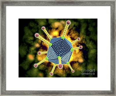 Microscopic View Of The Common Cold Framed Print
