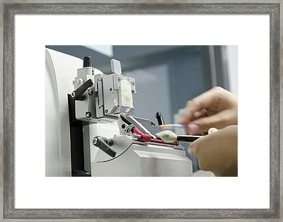 Microtome Slicing Of Sample In Paraffin Framed Print by Pan Xunbin