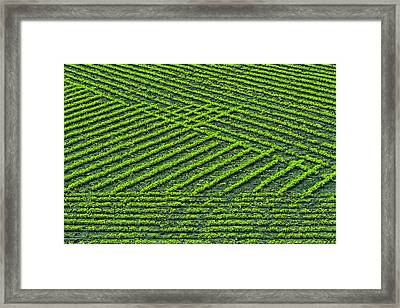 Mid-north Indiana Framed Print by Rona Schwarz