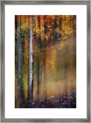 Mid-october Framed Print