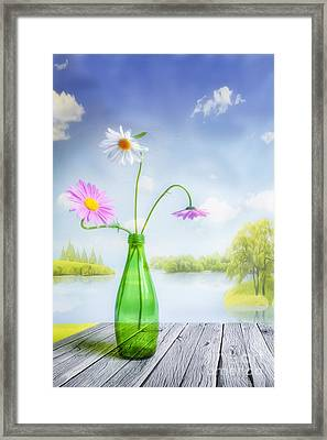 Mid Summer Framed Print by Veikko Suikkanen