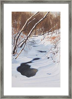 Mid Winter On The Alexauken Framed Print