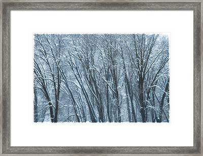 Framed Print featuring the photograph Mid-winter Storm by Jonathan Nguyen