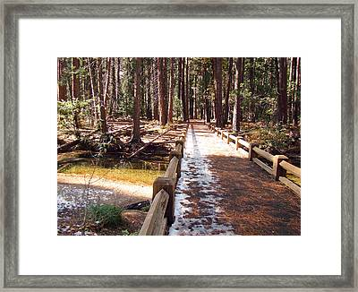 Framed Print featuring the photograph Yosemite Midday Sunlight by Walter Fahmy