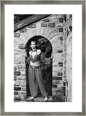 Middle Eastern Princess 2 Framed Print by Stephanie Grooms