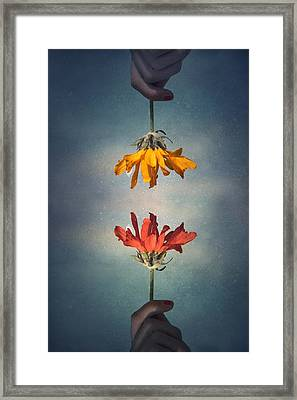 Middle Ground Framed Print