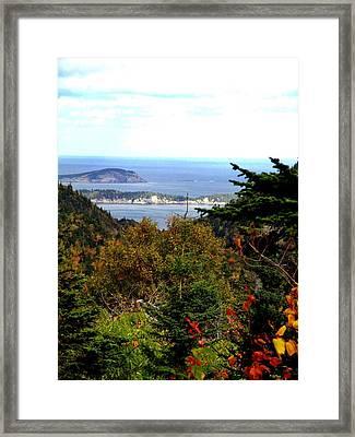 Middle Head Cape Breton Framed Print by Janet Ashworth