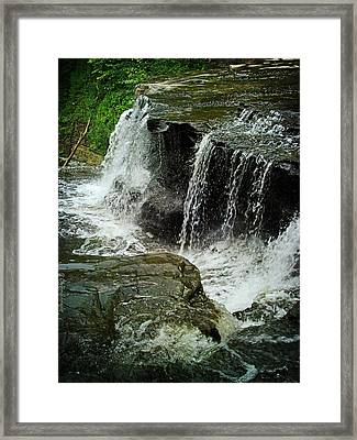 Middle Johnson Falls Framed Print by Lianne Schneider