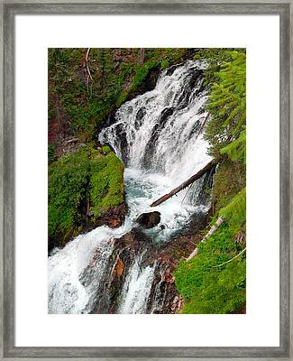 Middle Of Red Blanket Falls Framed Print by Teri Schuster