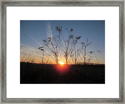 Middle Of The Field Sunrise Framed Print