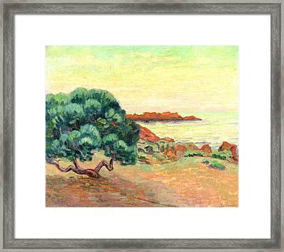 Midi Landscape Framed Print
