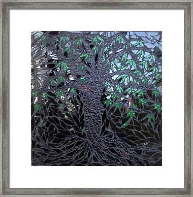 Midnight Banyan Framed Print by Alison Edwards