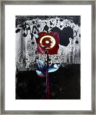 Midnight Beauty Framed Print