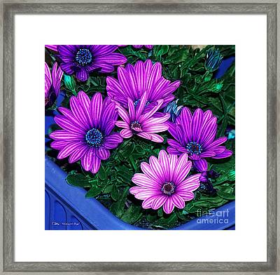 Midnight Blue Framed Print by Mo T