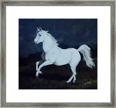 Midnight Dancer Framed Print