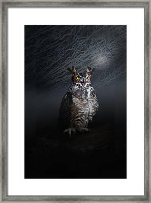 Midnight Guardian Framed Print by Renee Forth-Fukumoto