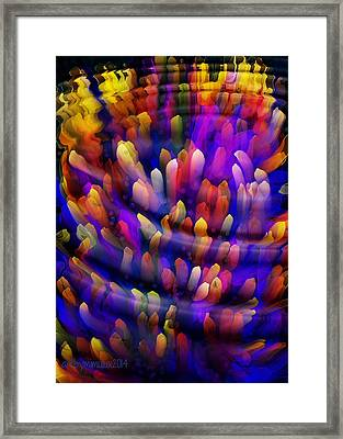 Midnight In The Reef Framed Print by Mimulux patricia no No
