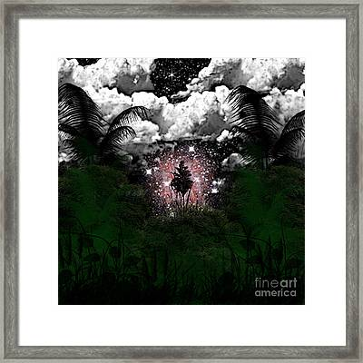 Midnight In The Wild Framed Print