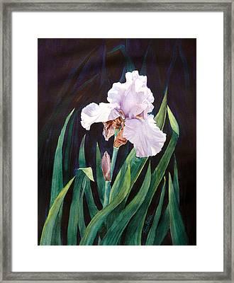 Framed Print featuring the painting Midnight Iris by Karen Mattson