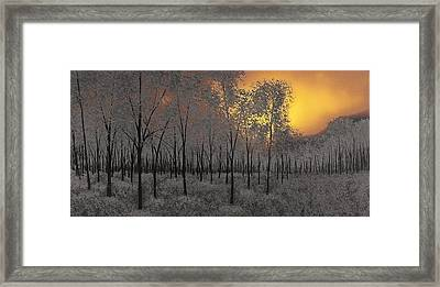 Midnight Framed Print by Justin  Strom
