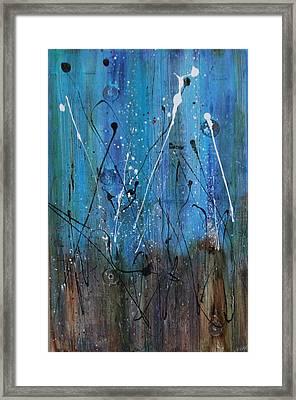 Starry Nights Framed Print by Lauren Petit
