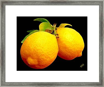 Midnight Lemons Framed Print by Ben and Raisa Gertsberg