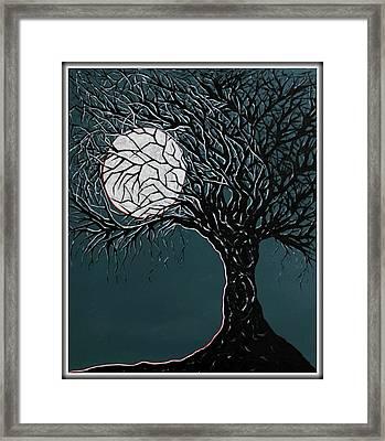 Midnight Framed Print by Madison Frasier