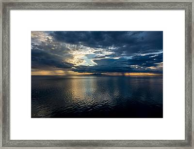 Midnight Majesty Framed Print