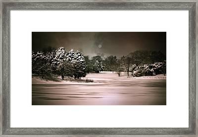 Midnight Stillness Framed Print by Julie Palencia