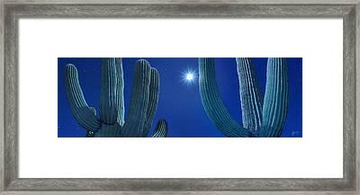 Midnight Sun - Craigbill.com - Open Edition Framed Print by Craig Bill