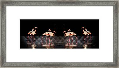 Midnight Tango Framed Print by Ernestine Manowarda