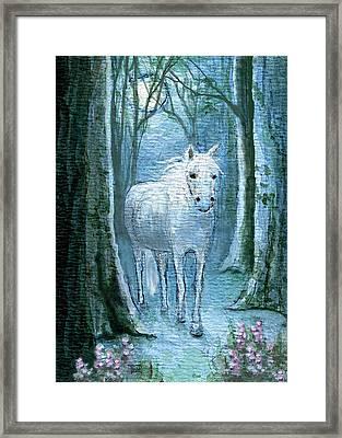 Midsummer Dream Framed Print