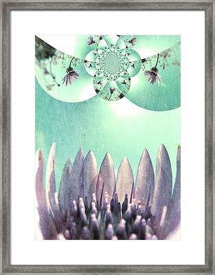 Midsummer Vision Framed Print by Marianna Mills