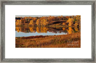 Midwest Fall Framed Print by Elizabeth Winter