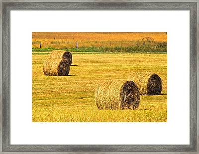 Midwest Farming Framed Print by Frozen in Time Fine Art Photography