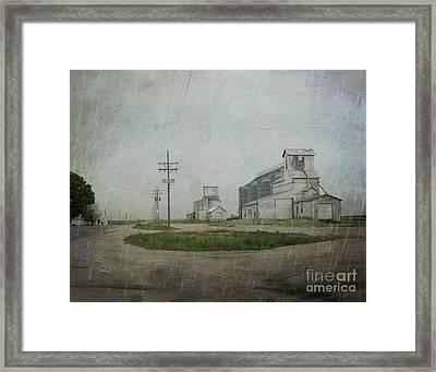 Midwest Prairie Feed Grain Framed Print by Juli Scalzi