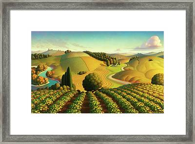 Midwest Vineyard Framed Print by Robin Moline